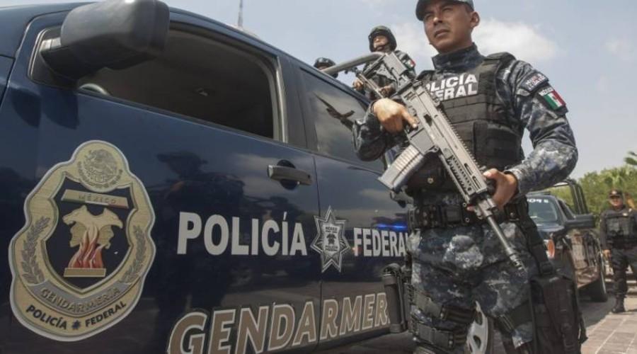 La Gendarmería no ayuda a disminuir los delitos, sus operativos son deficientes: ASF | El Imparcial de Oaxaca
