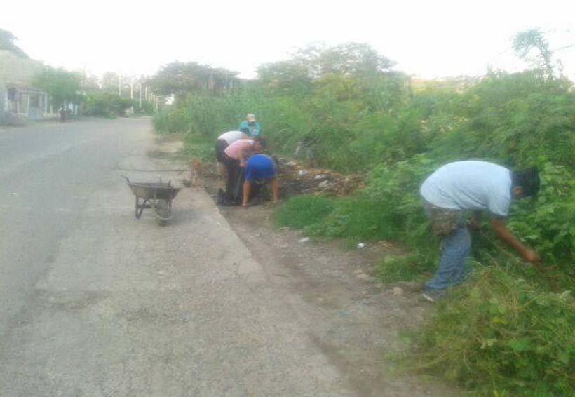 En el Istmo realizan trabajos de limpieza del  canal para evitar fauna nociva