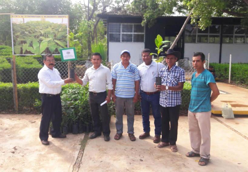 Entrega plantas el CBTA de Pinotepa Nacional