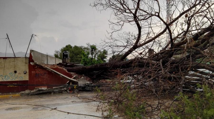 Daños menores dejan lluvias | El Imparcial de Oaxaca