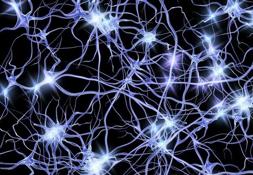 Investigadores chinos crean transistores con las capacidades básicas de las neuronas   El Imparcial de Oaxaca