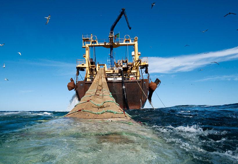 En el Istmo piden frenar la pesca ilegal