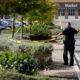 Murieron 4 mexicanos en tráiler de Texas: SRE