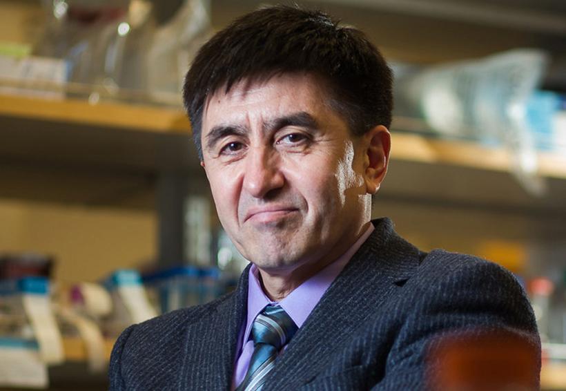 Científicos de EU modifican con éxito ADN de embriones humanos
