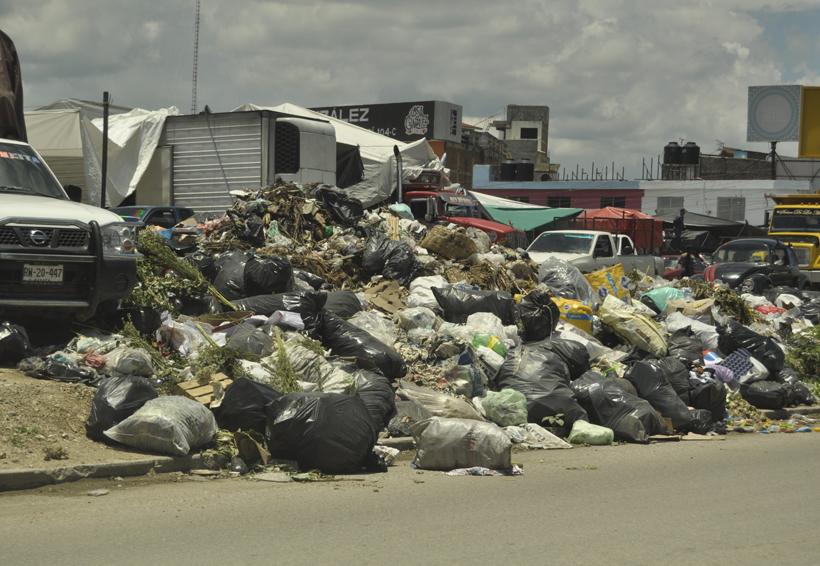 Inicia ayuntamiento de Oaxaca retiro de basura de riberas del río Atoyac