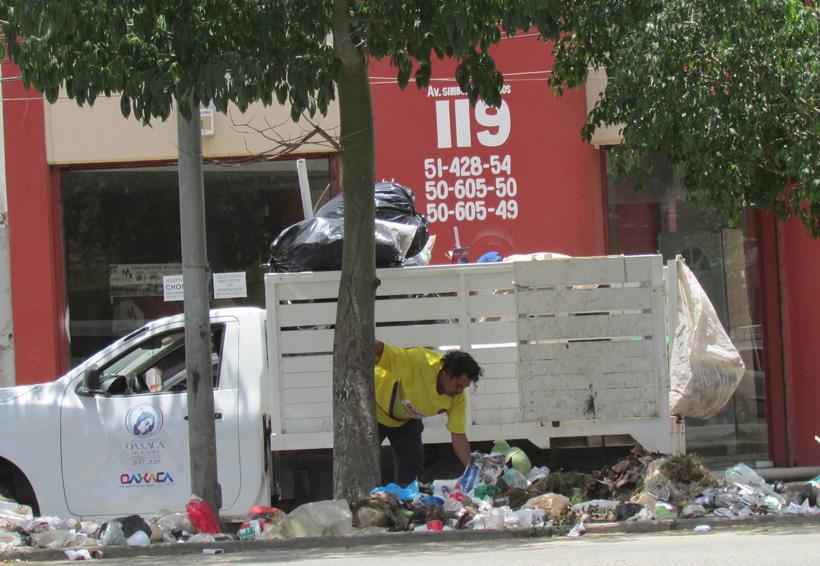 Retiran basura  del Centro Histórico de Oaxaca