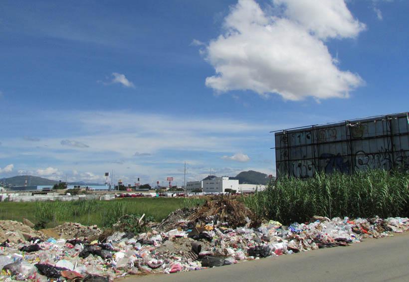 Oaxaca en riesgo de contaminación por tiradero de basura clandestino