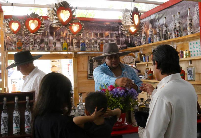 Mezcal de Oaxaca, su auge y la carencia de agaves