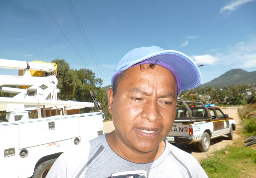 Cae árbol por deslave de cerro en Tlaxiaco