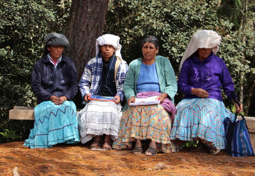 Sólo en la Cuenca el 45% de indígenas habla una lengua materna