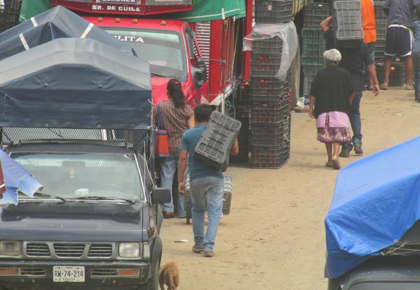 Advierten zona de riesgo en Oaxaca por la venta de tomate | El Imparcial de Oaxaca
