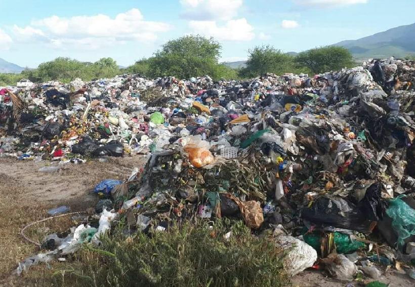 Tiran desechos en territorio del jaguar en Oaxaca | El Imparcial de Oaxaca