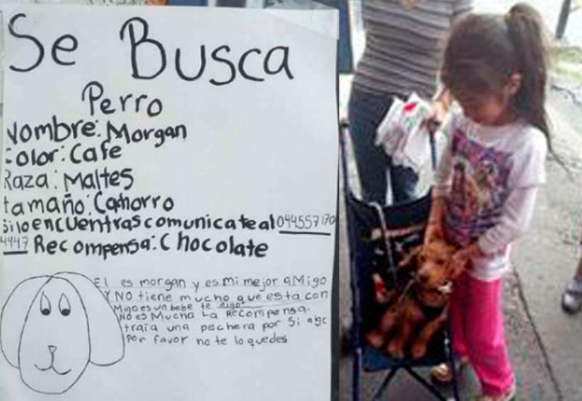 Niña encuentra a su perro gracias al cartel que ella misma dibujó | El Imparcial de Oaxaca