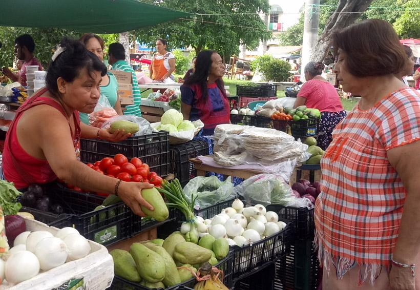 Sin censo de comercios afectados por el temblor en el Istmo, Oaxaca | El Imparcial de Oaxaca