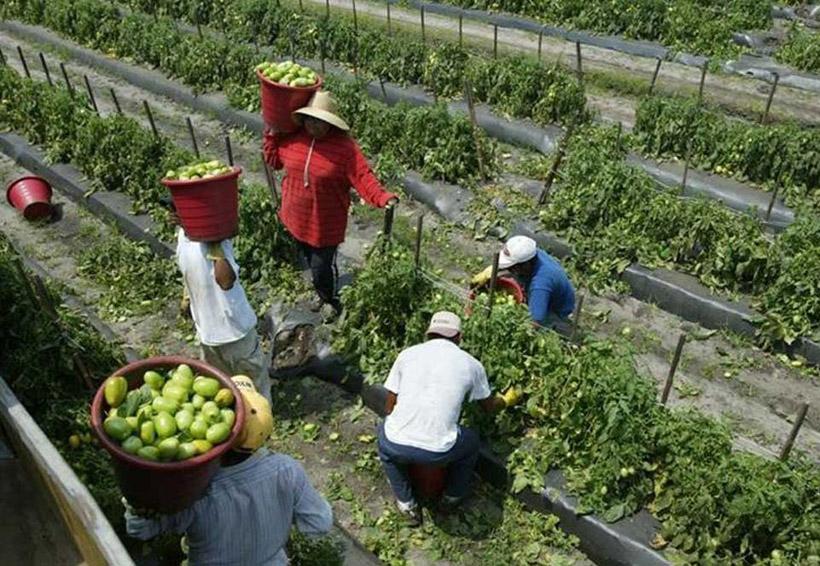 ONU presenta observaciones al informe de México sobre trabajadores migratorios | El Imparcial de Oaxaca