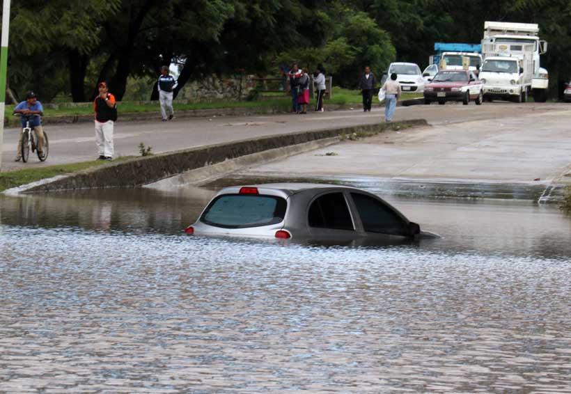 Árboles caídos y calles inundadas, provoca fuerte lluvia en la capital | El Imparcial de Oaxaca