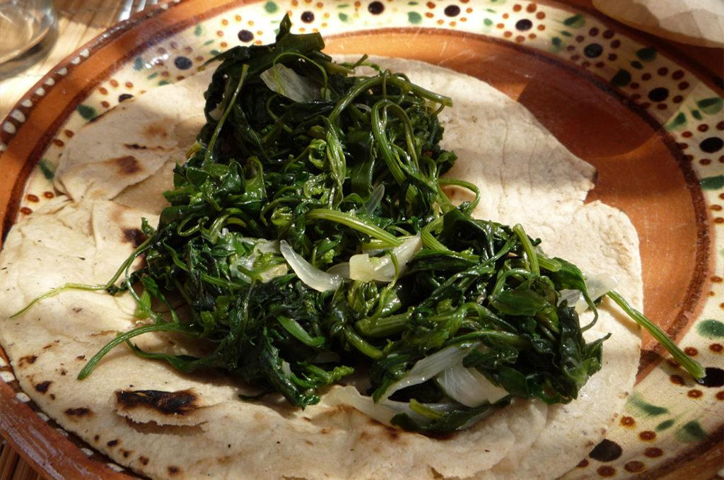Receta: Prepara estos ricos tacos de quelites | El Imparcial de Oaxaca
