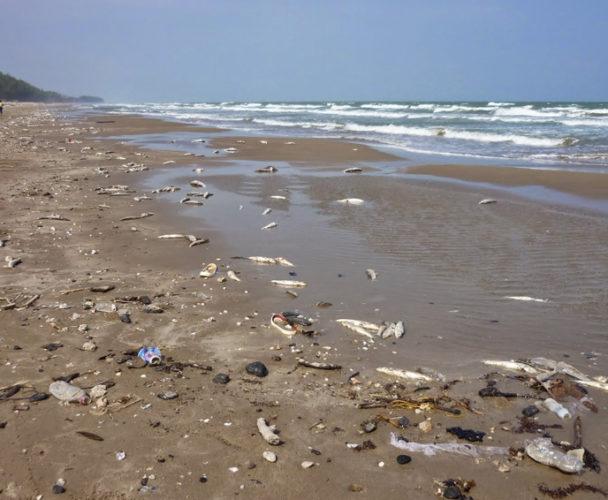 Piden a Pemex evitar mareas negras en Salina Cruz, Oaxaca