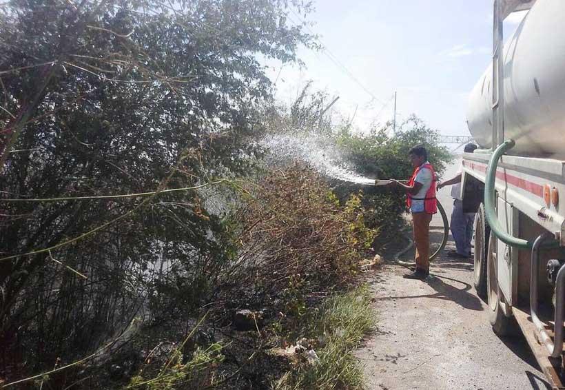 Controlan incendios en el Istmo de Oaxaca