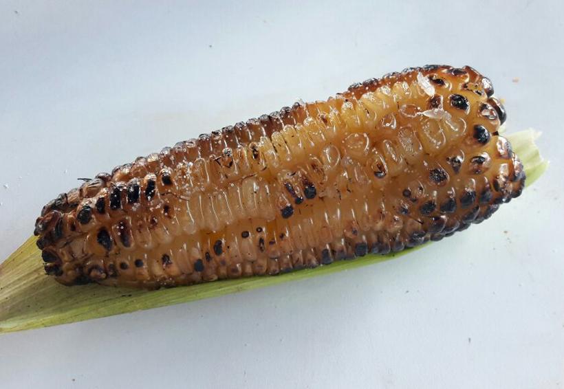 En San Pedro Yodoyuxi preservan consumo de maíces criollos