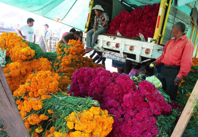 Implementan operativo en la Central de Abasto de Oaxaca | El Imparcial de Oaxaca