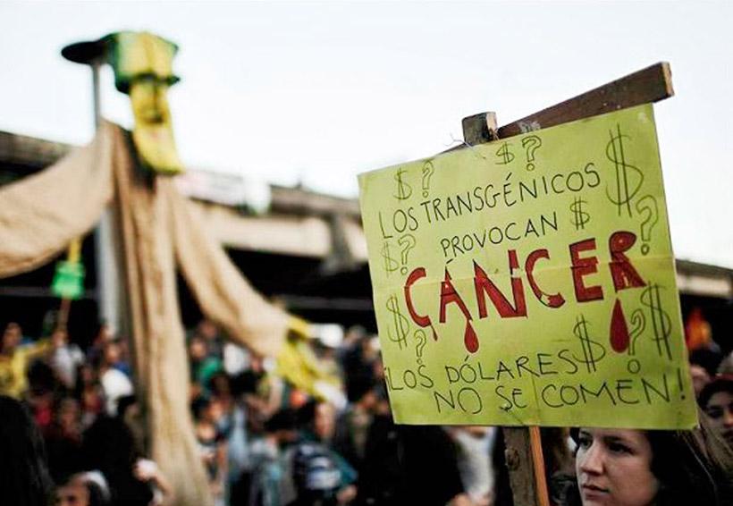 Alimentos transgénicos, glifosato y cáncer | El Imparcial de Oaxaca