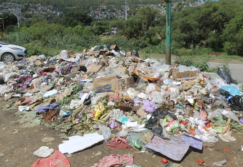 Reinician descarga de toneladas de basura en el tiradero municipal de Oaxaca | El Imparcial de Oaxaca