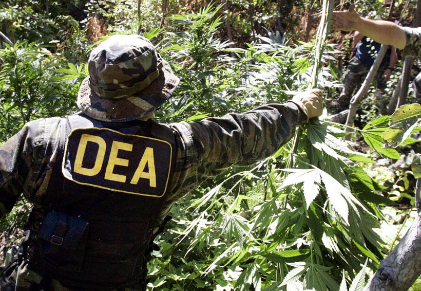 Crece producción de heroína en México y consumo de cocaína en EU: DEA | El Imparcial de Oaxaca