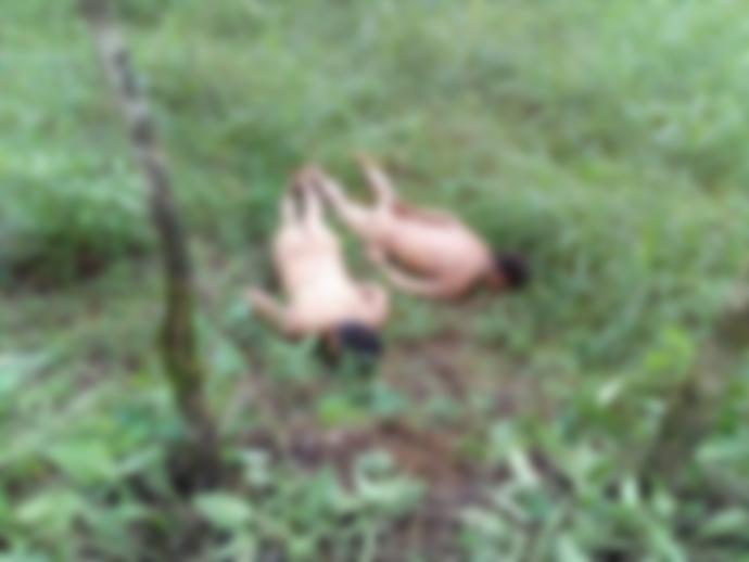 Identifican a oaxaqueños asesinados en Veracruz | El Imparcial de Oaxaca