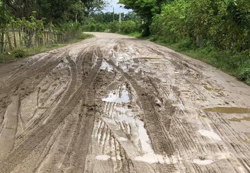 Claman productores de la Costa de Oaxaca rehabilitación de carretera | El Imparcial de Oaxaca