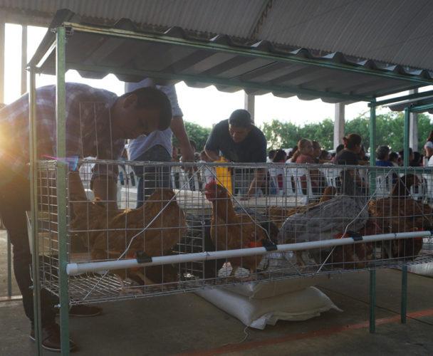 Ayudan a 118  productores de Tuxtepec, Oaxaca