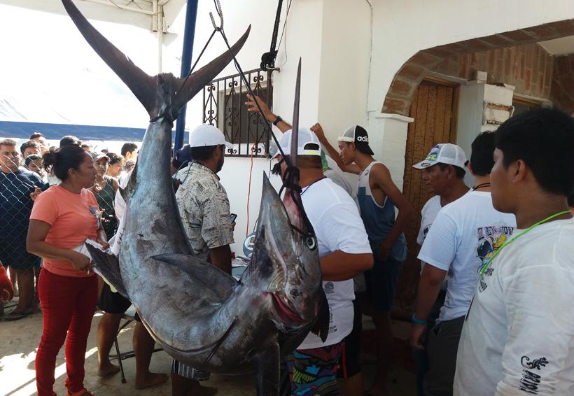 Gran éxito en Puerto Escondido por el Torneo de Pez Vela