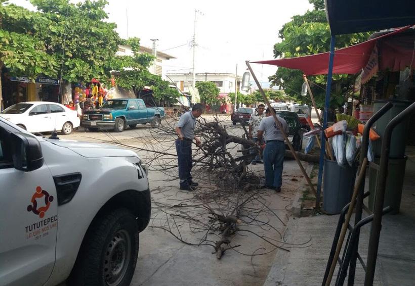 Torrencial lluvia en la Costa de Oaxaca