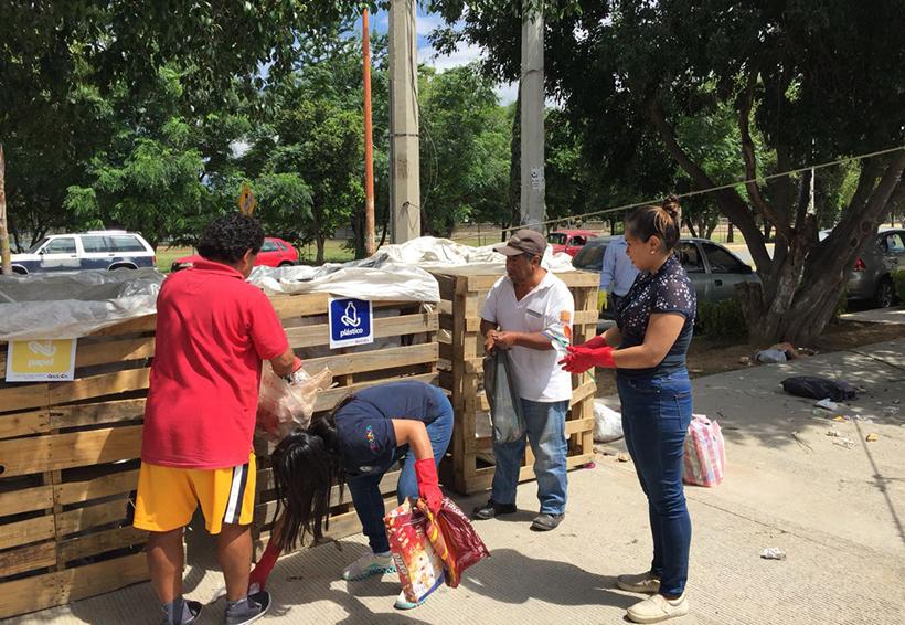 Desatienden contenedores de  basura en agencia de Candiani, Oaxaca | El Imparcial de Oaxaca