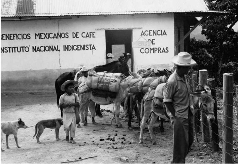 Oaxaca y su historia, clave para el futuro | El Imparcial de Oaxaca