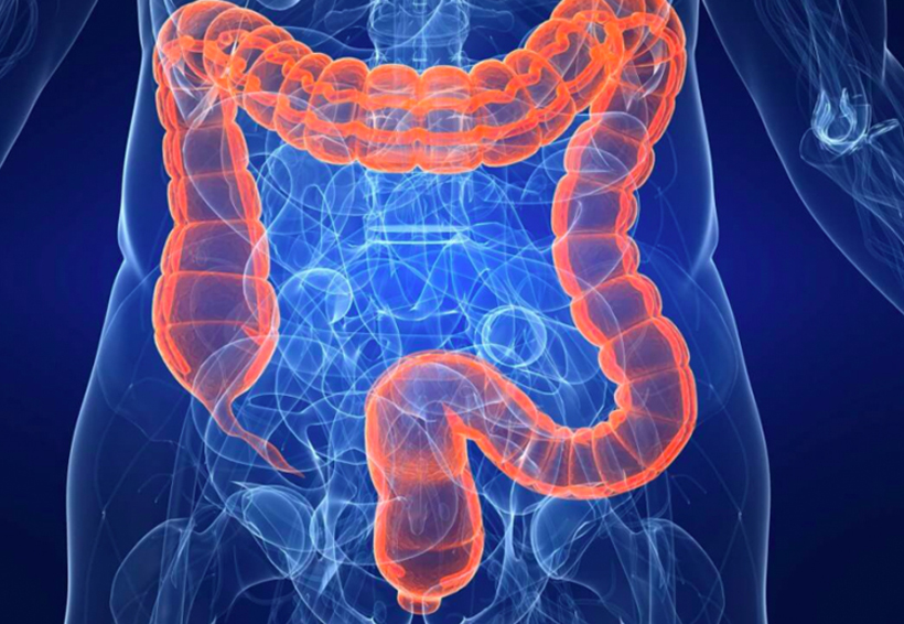 Oaxaca, en el lugar 10 de enfermedad infecciosa intestinal | El Imparcial de Oaxaca