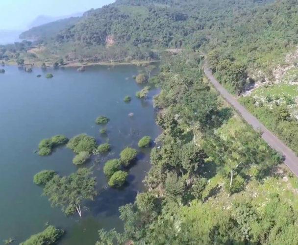 En Ojitlán Oaxaca aplicarán un programa  para el rescate del Chinanteco