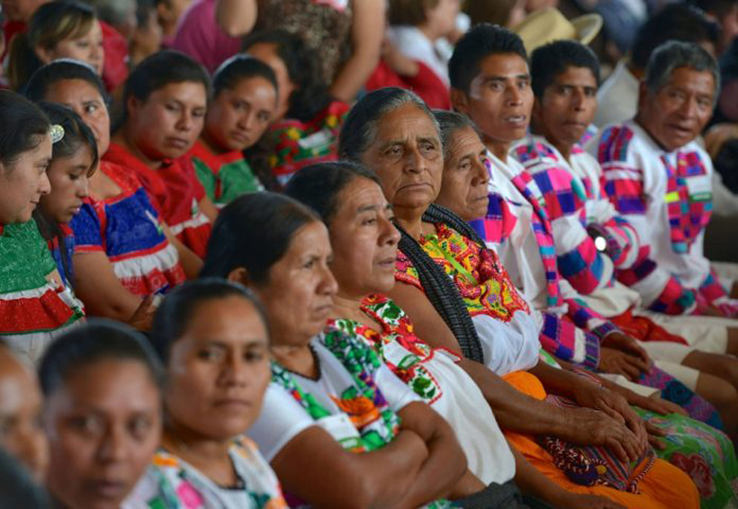 Otorgan a CIARENA Premio Bartolomé de las Casas a mujeres indígenas en Oaxaca | El Imparcial de Oaxaca