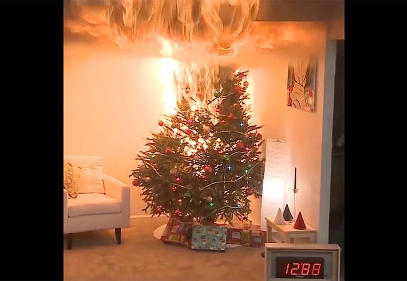 Lo peligroso de la Navidad, en 30 segundos arde por completo un pino navideño seco | El Imparcial de Oaxaca