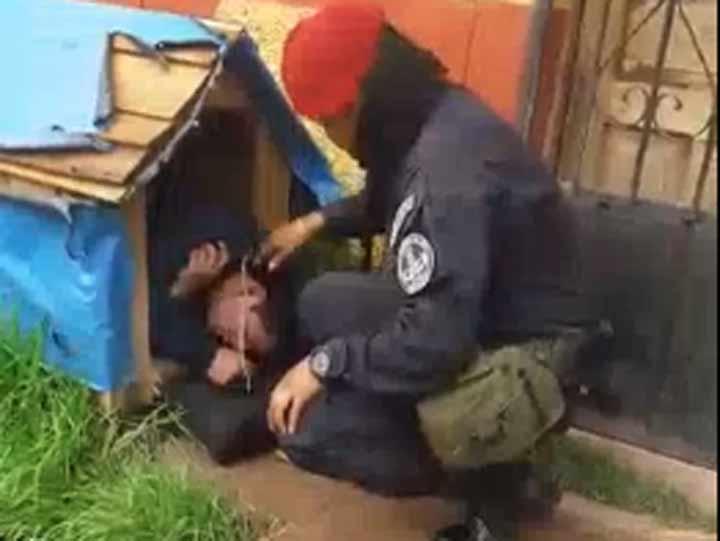 Video: Borracho roba casa de perro para dormir   El Imparcial de Oaxaca