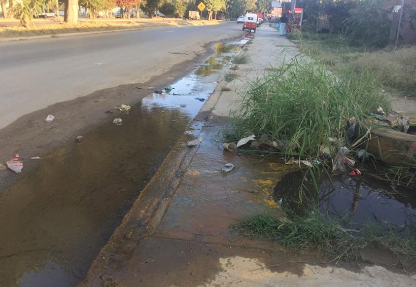 Atiende SAPAO fuga de agua en av. Símbolos Patrios, Oaxaca | El Imparcial de Oaxaca