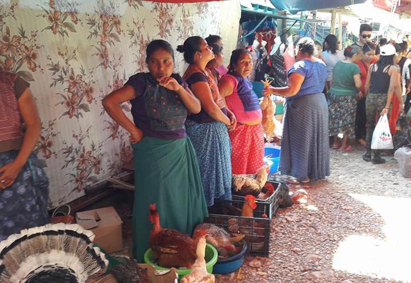 En el Istmo aumenta el costo del pavo para la cena de fin de año | El Imparcial de Oaxaca