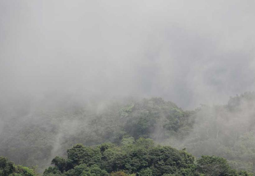 Piden estar alertas ante los fríos en la Mixteca de Oaxaca