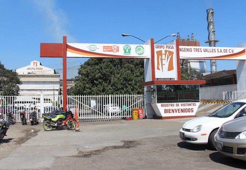 Productores de caña en Tuxtepec está en riesgo | El Imparcial de Oaxaca