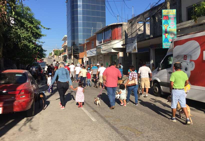 Realizan caminata con mascotas  en Pinotepa Nacional, Oaxaca | El Imparcial de Oaxaca