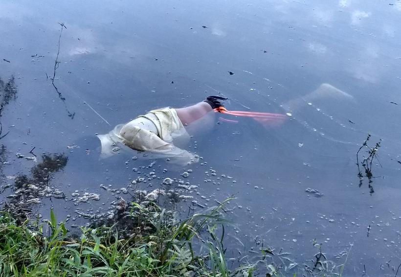 Hallan cadáver flotando en la Cuenca, Oaxaca   El Imparcial de Oaxaca