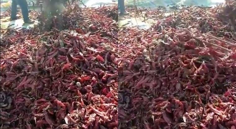 Video: El motivo por el que debes lavar los chiles secos antes de usarlos | El Imparcial de Oaxaca