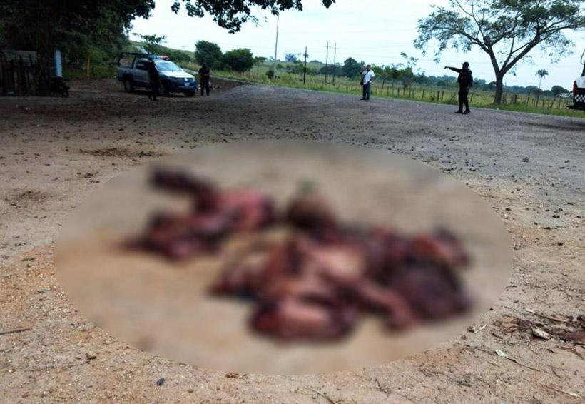 Descuartizan y tiran a cinco personas en limites de Veracruz y Oaxaca | El Imparcial de Oaxaca