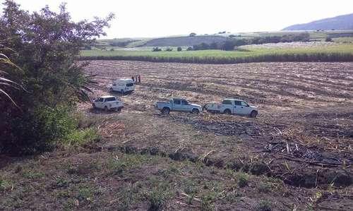 Cuerpos hallados en fosas de Nayarit ya suman 32 | El Imparcial de Oaxaca