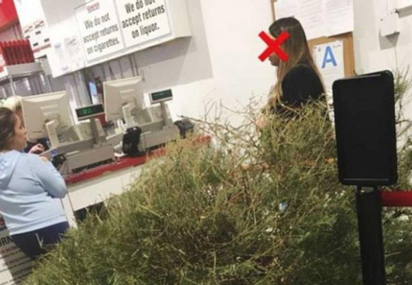 Exige reembolso porque su árbol de Navidad 'estaba muerto' | El Imparcial de Oaxaca